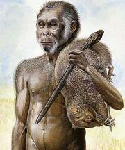 http://www.monstropedia.org/images/thumb/d/d3/Ebugogo.jpg/180px-Ebugogo.jpg